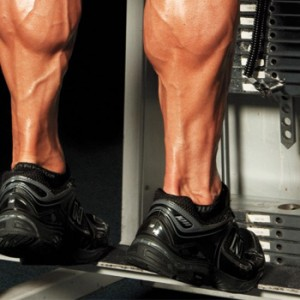 Standing Calf Raise Machine: How To Use, Benefits and Muscles Worked