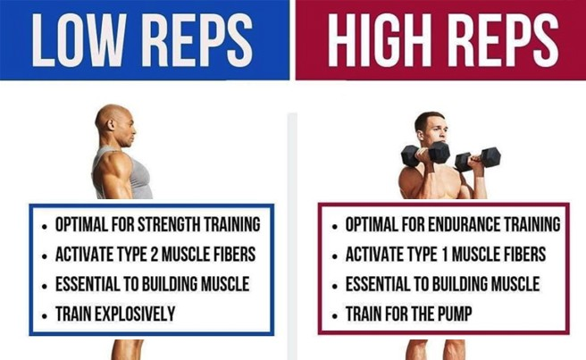 High vs Low Reps