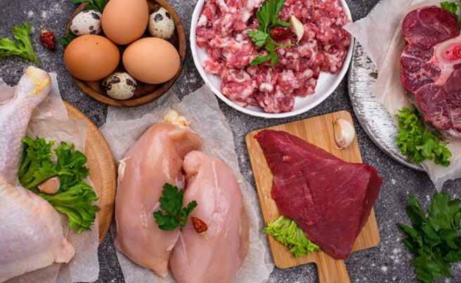 Carnivore Diet Example