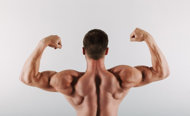 Muscle Growth Progress