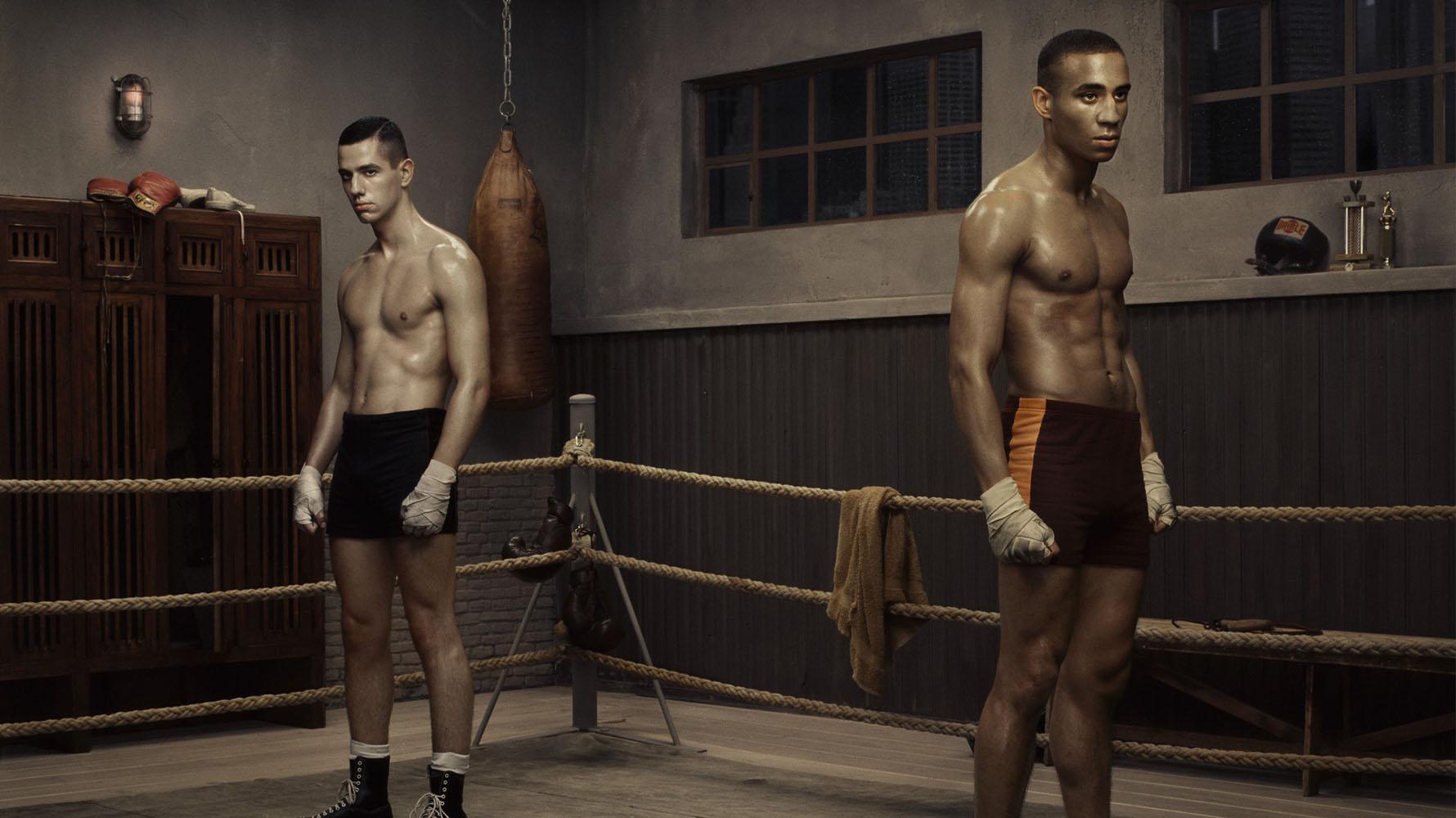 boxer body