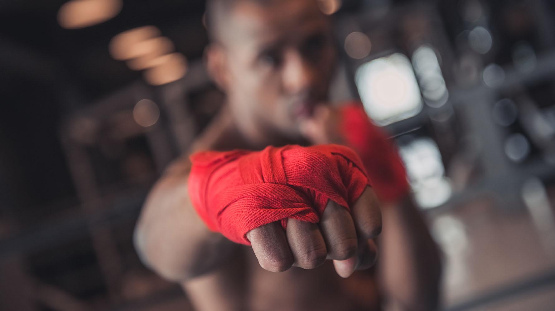 boxer body type tips