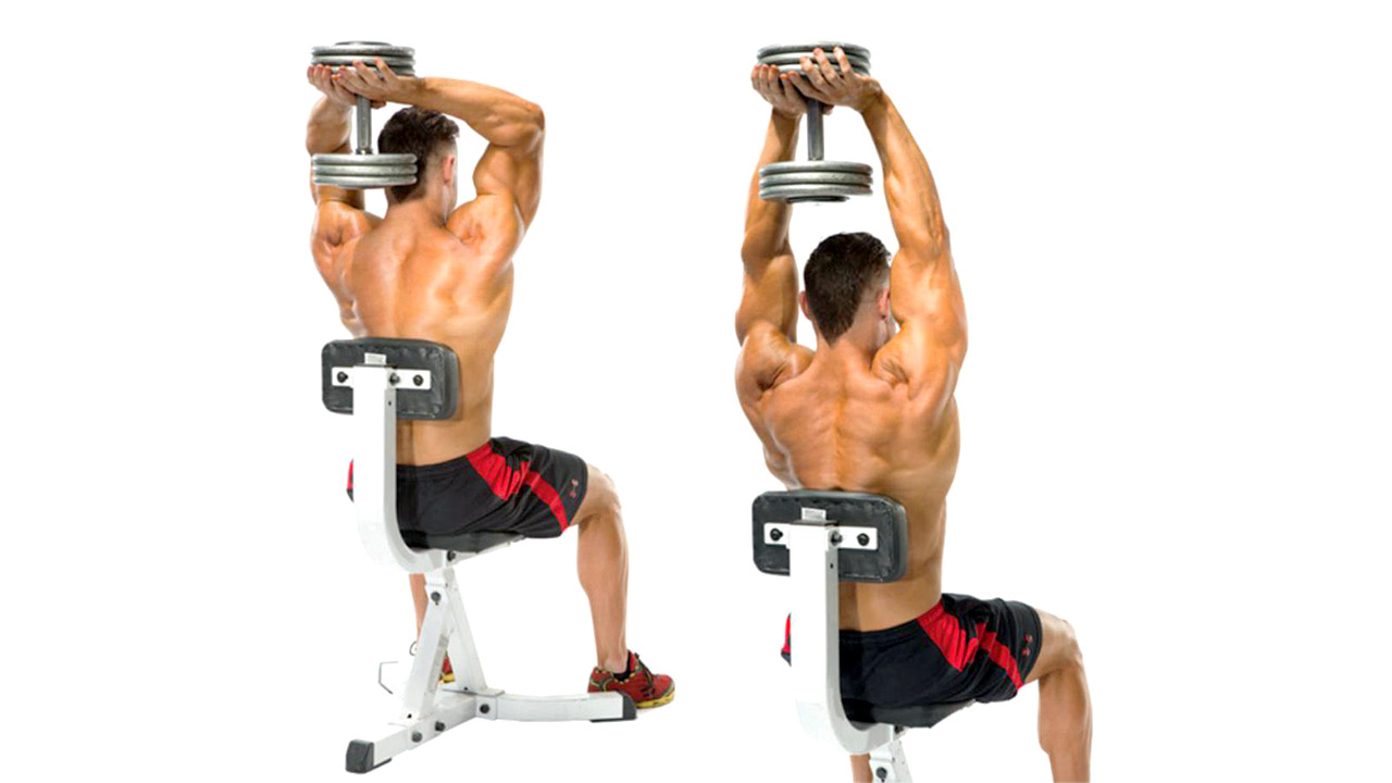 seated dumbbell french press
