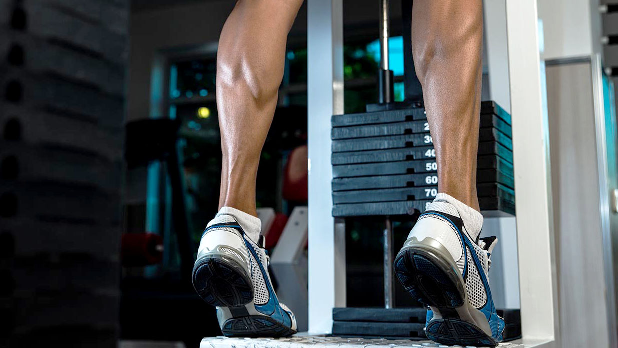 what muscles does standing calf raises work?